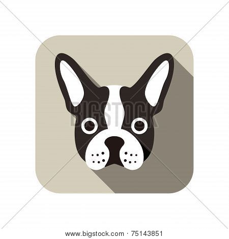 French bulldog animal flat icon