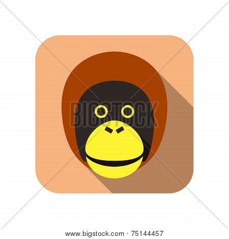 Pongo animal flat icon