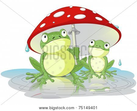 Two frogs are hiding from the rain under the fly-agaric