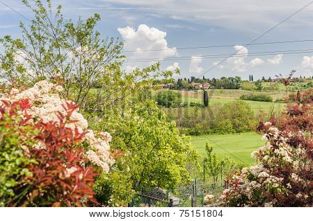 Colorful Valley Of Tuscany