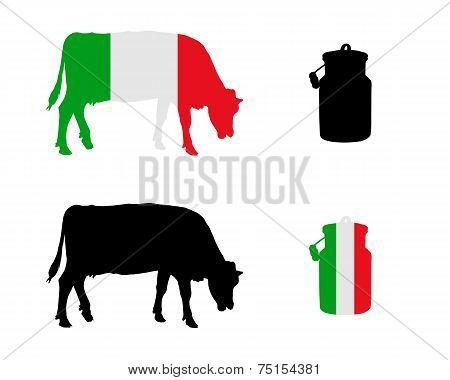 Italian Milk Cow