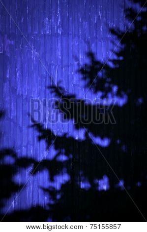 Abstract Shade Tree