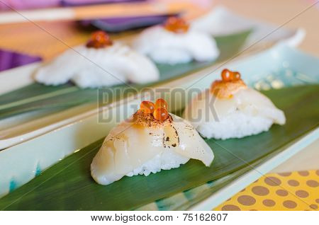 Fresh Sea Scallops Sushi