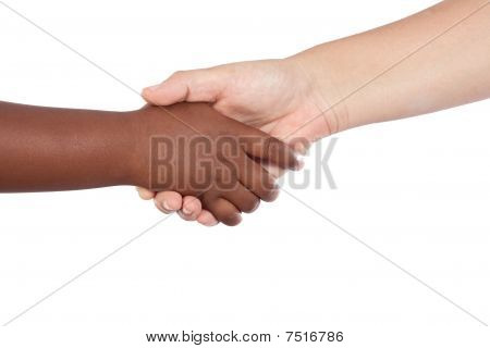 Handshake Between An African-american And Caucasian