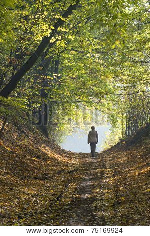 A woman walks through the forest in autumn.