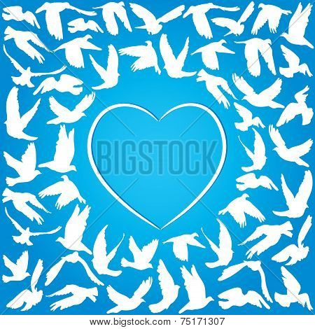Flying dove for peace concept and wedding design. white heart on a blue background. Vector