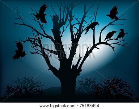 Black ravens on the tree