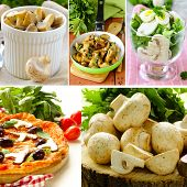 stock photo of champignons  - collage menu different dishes from mushrooms champignons - JPG
