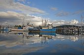 stock photo of fleet  - Fishing fleet in Bellingham harbor with beautiful clouds and reflections - JPG
