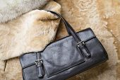 picture of mink  - A black leather bag of warm blond sheepskin blue fox and red sable mink furs - JPG