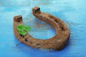 pic of wooden horse  - Old horse shoe - JPG