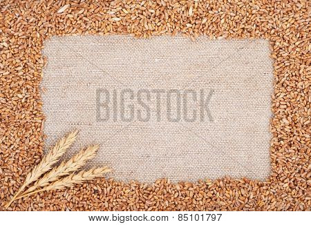Wheat ears on sacking