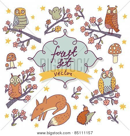 Vector forest set - stunning colorful cartoon set with owls, birds, fox, stars, hedgehog, flowers and mushrooms. Sweet childish background in vector