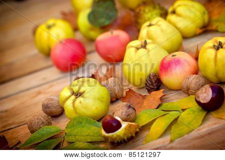 Quinces on table, close-up