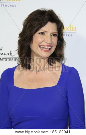 LOS ANGELES - JAN 8: Martha Williamson at the TCA Winter 2015 Event For Hallmark Channel and Hallmark Movies & Mysteries at Tournament House on January 8, 2015 in Pasadena, CA