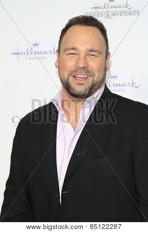LOS ANGELES - JAN 8: Matt Rogers at the TCA Winter 2015 Event For Hallmark Channel and Hallmark Movies & Mysteries at Tournament House on January 8, 2015 in Pasadena, CA