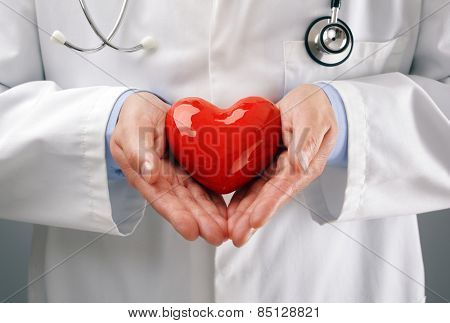 Doctor or cardiologist holding heart with care in hands concept for healthcare and diagnosis medical cardiac pulse test