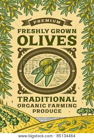 Retro olives poster. Fully editable vector illustration with clipping mask.