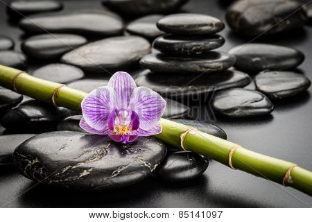 zen basalt stones and orchid.