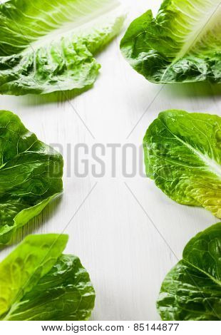 Romaine lettuce on white wooden board