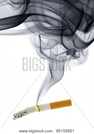 Cigarette stub with smoke isolated over the white background