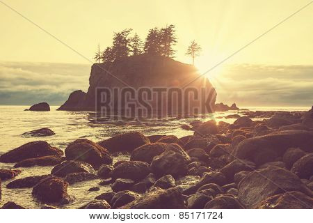 Ocean coast in Olympic National Park, Washington
