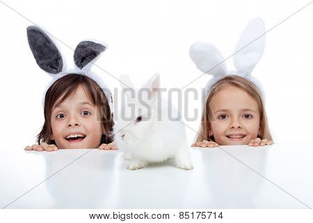 Kids looking at their white rabbit pet - wearing bunny ears, isolated