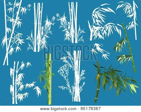 illustration with bamboo collection isolated on blue background