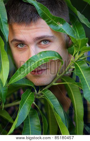 Man hiding behind leafs
