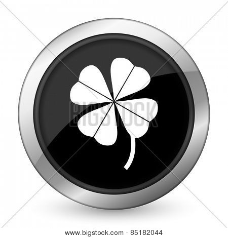 four-leaf clover black icon