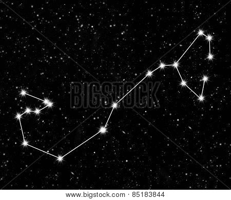 constellation Scorpius against the starry sky
