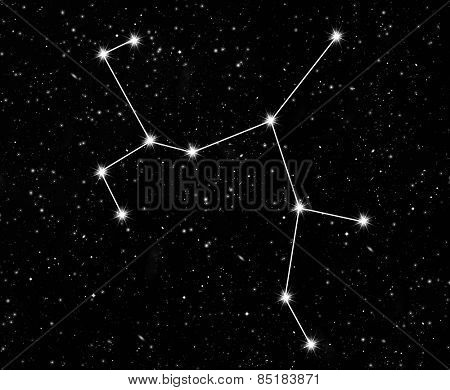 constellation Sagittarius against the starry sky