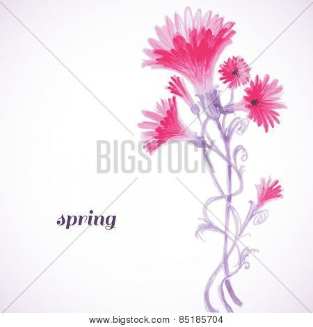 Pink flowers watercolor painting, spring background