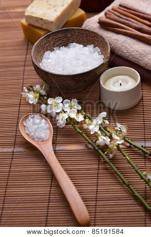 Spa setting with cherry,salt in bowl ,towel, soap with mat