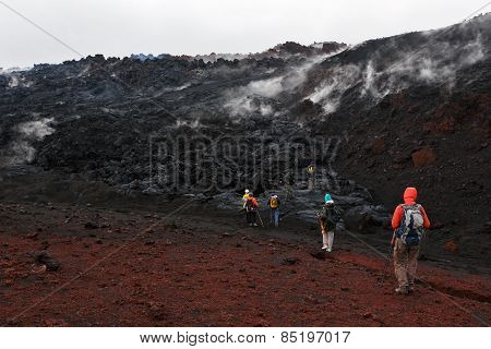 Group Of Tourists Hiking On The Lava Field Eruption Tolbachik Volcano On Kamchatka Peninsula. Russia