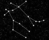 stock photo of gemini  - constellation Gemini against the starry sky - JPG