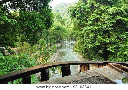 Beautiful sumatra green river & forest