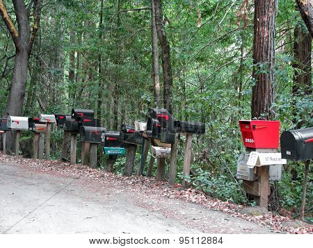CALIFORNIA STATE ROUTE 236 , CA - NOVEMBER 15:   Mailboxes Lined Up On Side of Rural Road  2012