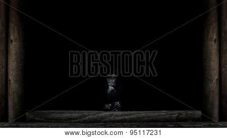 Solitary Ape