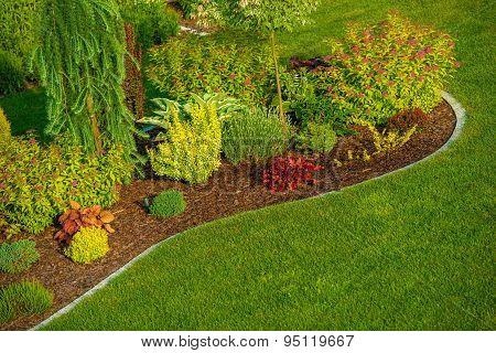 Newly Designed Garden