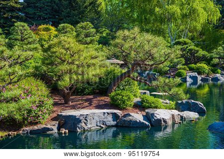 Rockery Garden And Pond