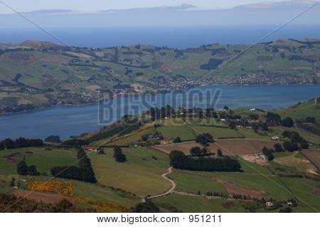 Dunedin Farmland View