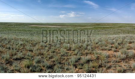 Steppe In Mangistau Region