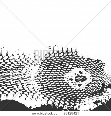 Snake Skin Abstract Texture, Cobra Head. Black On White Background. Vector