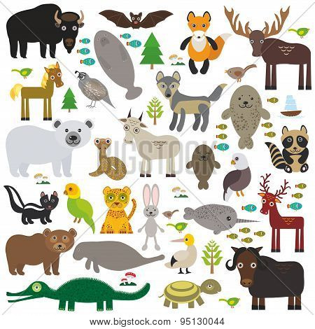 Bison Bat Manatee Fox Elk Horse Wolf Partridge Fur Seal Polar Bear Pit Viper Snake Mountain Goat Rac