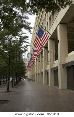 FBI mit flags