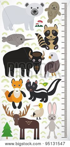 Animals Of North America - Narwhal Polar Bear Fur Seal Raccoon Skunk Fox Eagle Bison Elk Gannet Hare