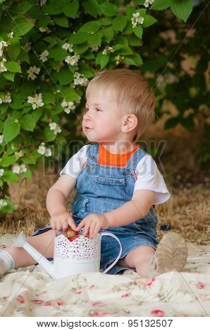 Little boy with strawberries in hand