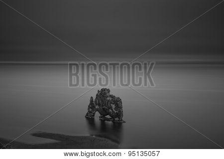 Hvitserkur At Night - Black And White Picture