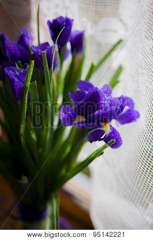 bouquet of flowers iris